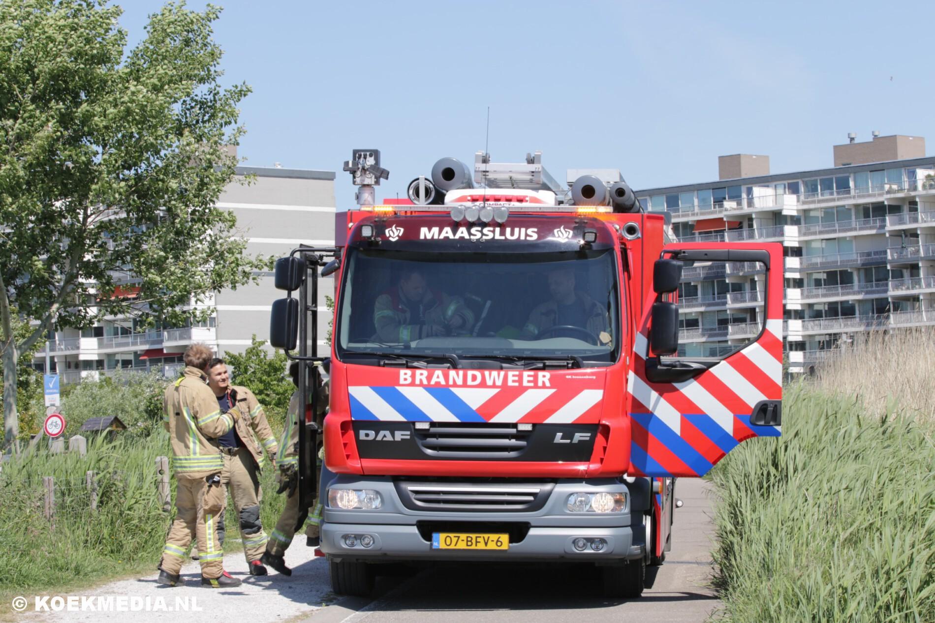 Smeulende boomstronk op natuurspeelplaats Avonturis Maassluis.