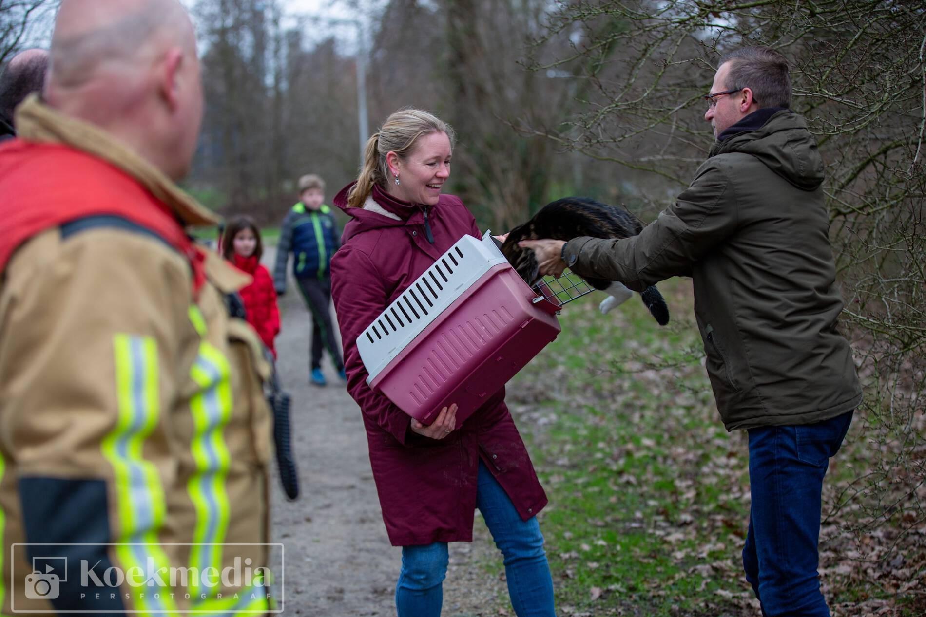 Brandweer redt kat uit boom in Maasland