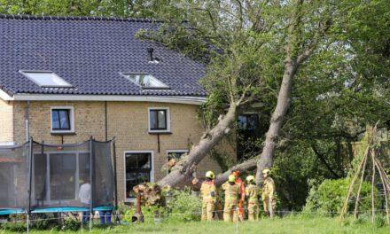 Grote boom valt op boerderijwoning in Maasland
