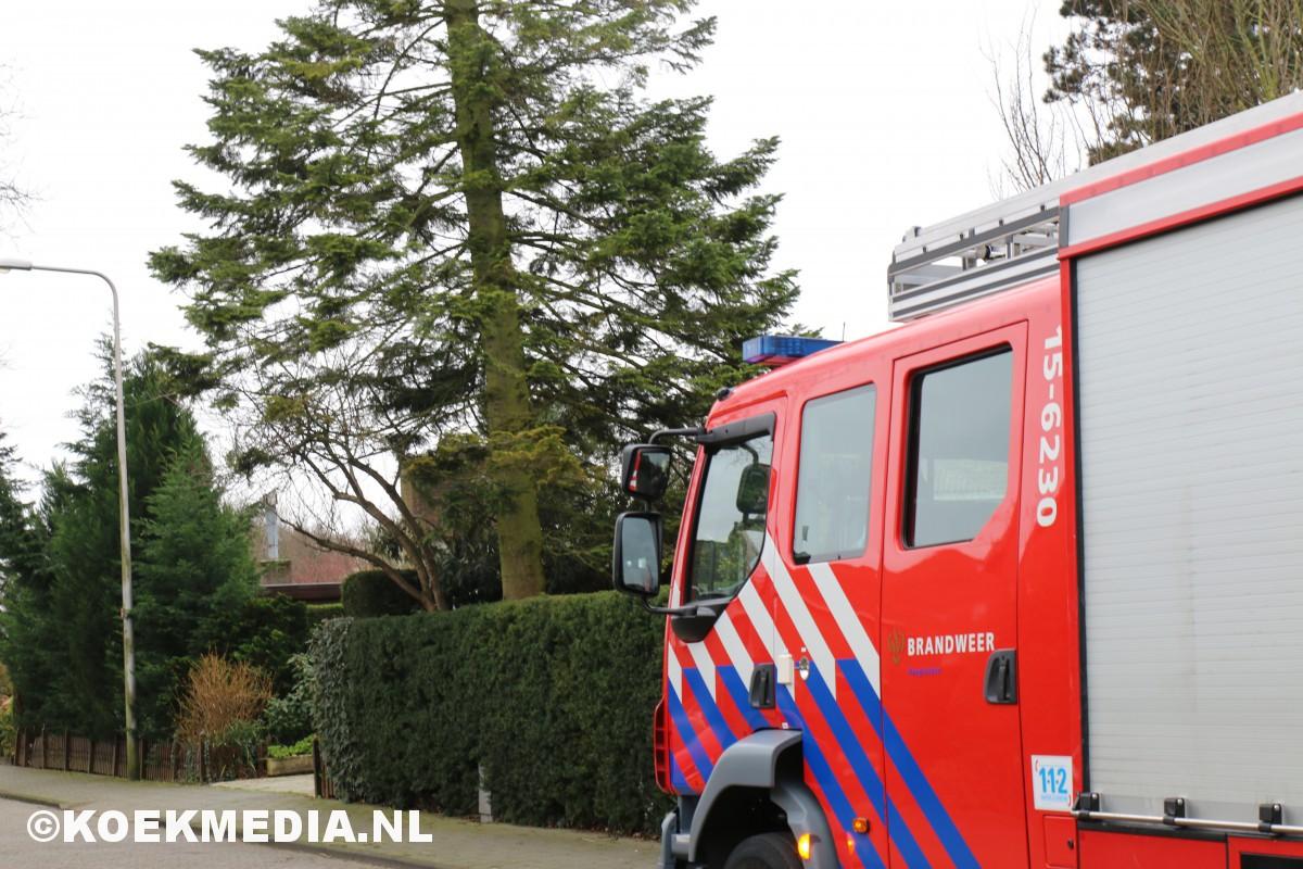 Brandweer Maasland druk met stormschade.